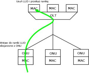 Komunikacja upstream w sieci GEPON